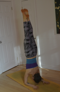 Forearm stand!