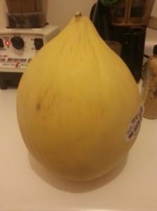 It looks like a giant onion, no?