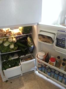 Is it a fridge or a jungle?
