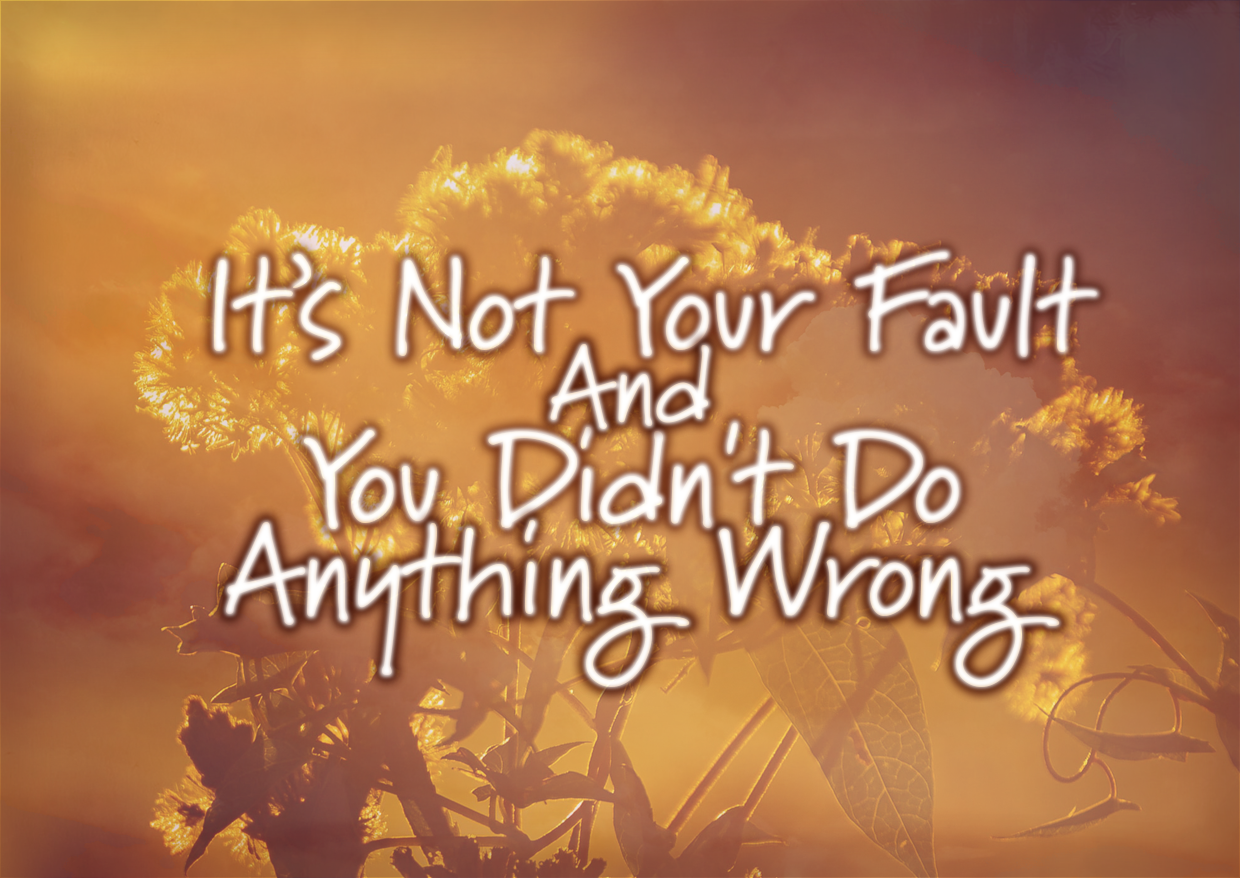 It's Not Your Fault And You Didn't Do Anything Wrong
