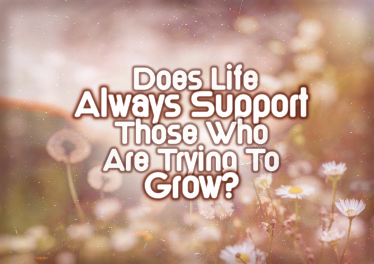 Does Life ALWAYS Support Those Who Are Trying To Grow?