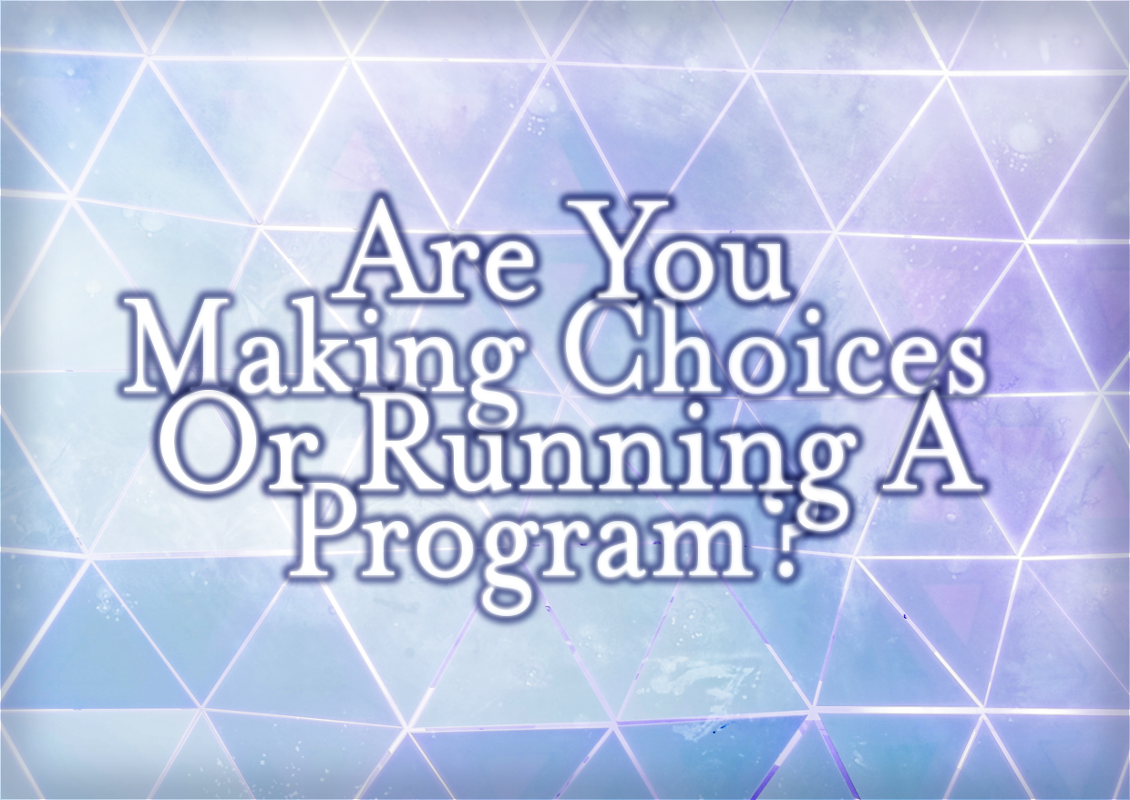 Are You Making Choices Or Running A Program?