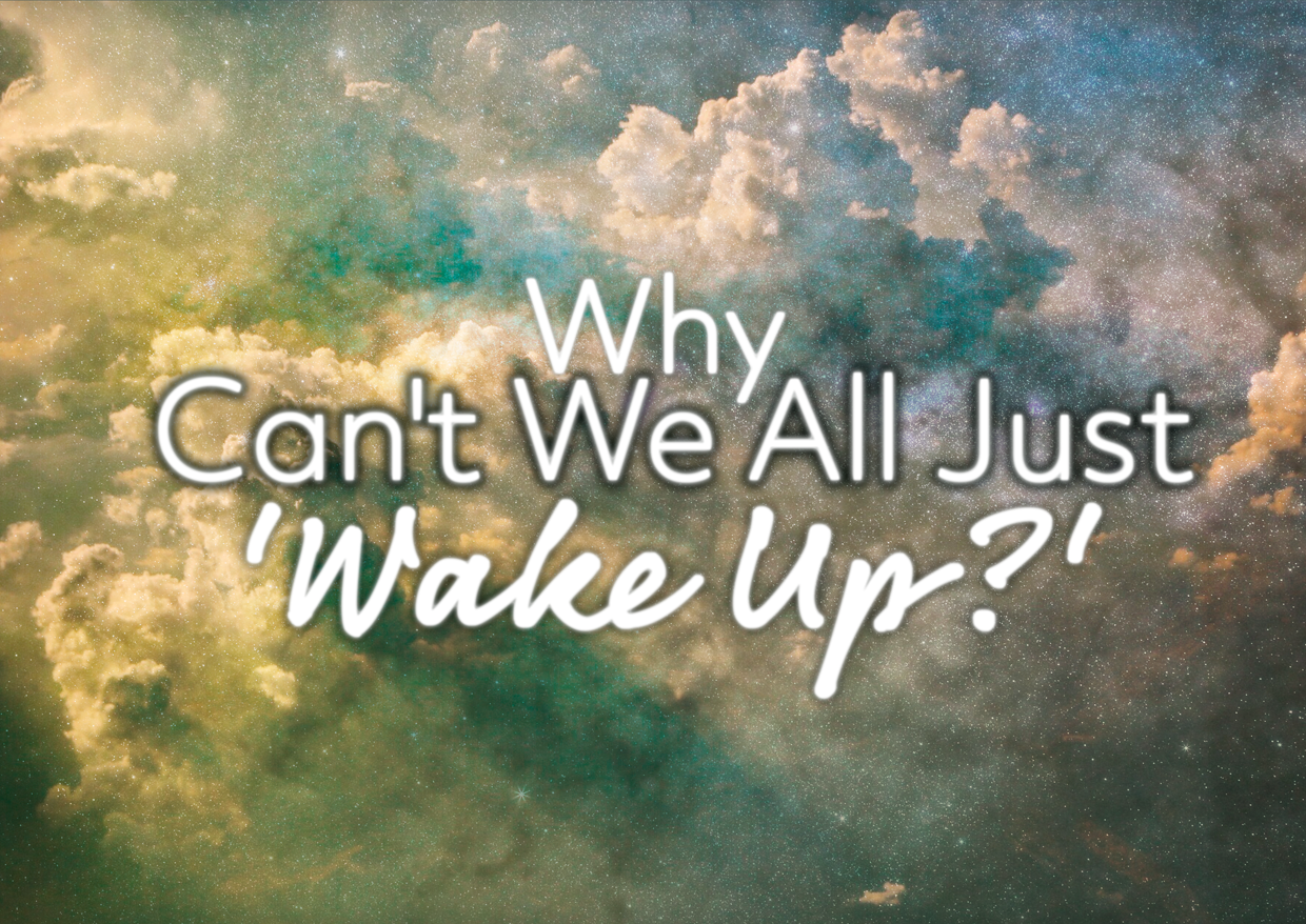 Why Can't We All Just 'Wake Up?'