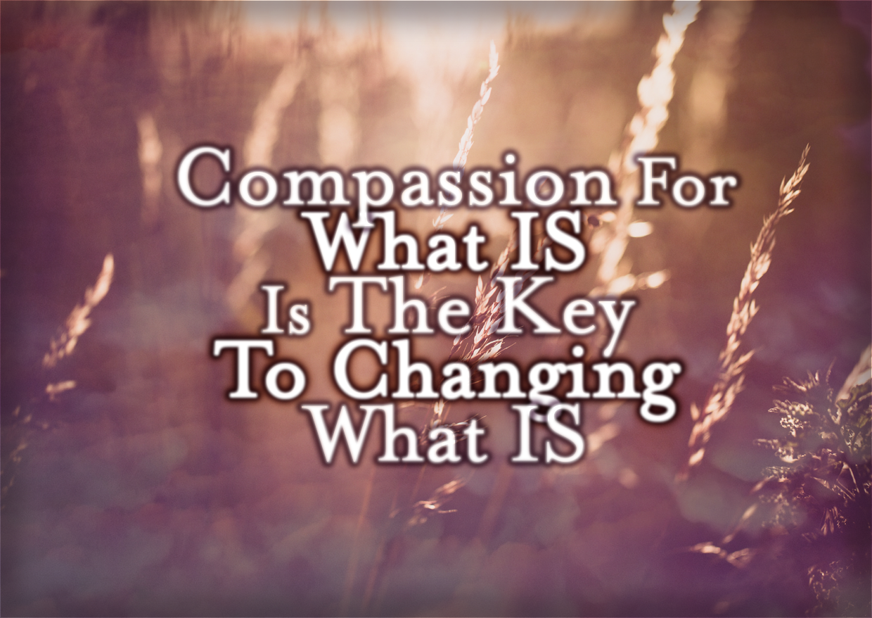 Compassion For What IS Is The Key To Changing What Is